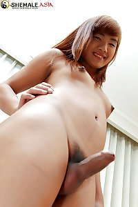 Cute Asian Ladyboys